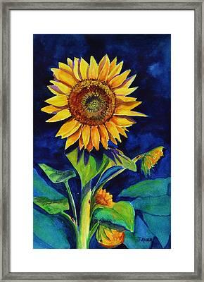 Midnight Sunflower Framed Print