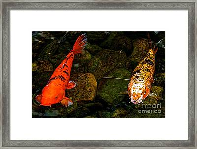 Look At Us Framed Print by Bennett Thompson