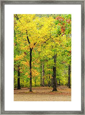 Look How They Shine For You Framed Print