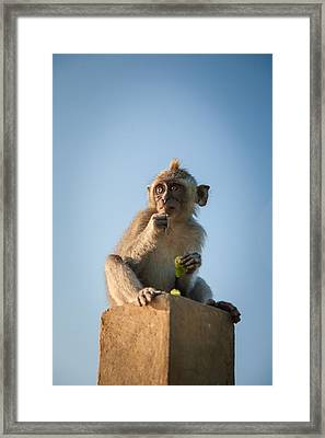 Look Into The Future Framed Print