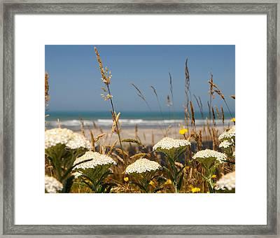 Look Sea Framed Print