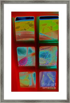 Look Through Any Window Framed Print