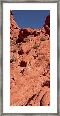 Look Through Framed Print by Wayne Vedvig