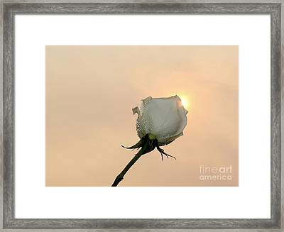 Look To The Sky Framed Print by Krissy Katsimbras