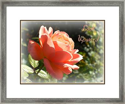Framed Print featuring the photograph Look Upward by Heidi Manly