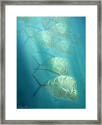Lookdowns Framed Print