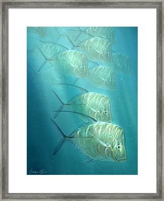 Lookdowns Framed Print
