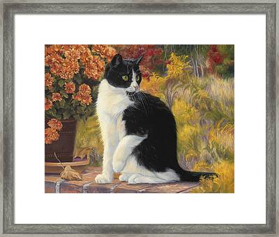 Looking Afar Framed Print by Lucie Bilodeau