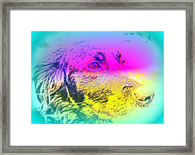 Who Are Looking After You And Me Now  Framed Print