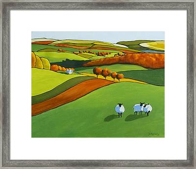 Looking At Ewe Framed Print