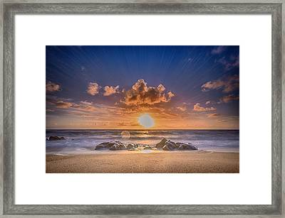 Looking At The Sun Framed Print
