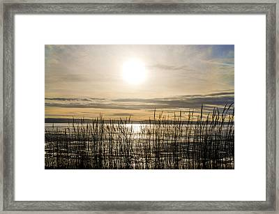 Looking At Wales Through The Grass Framed Print