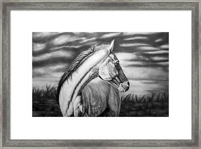 Looking Back Framed Print by Glen Powell