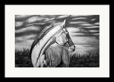 Horse Drawing Framed Prints