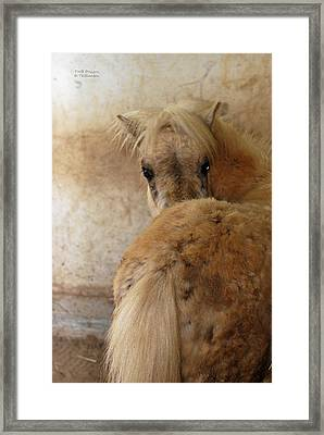 Looking Behind Framed Print by Teresa Blanton