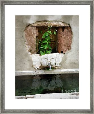 Looking Deeper Framed Print by Lainie Wrightson