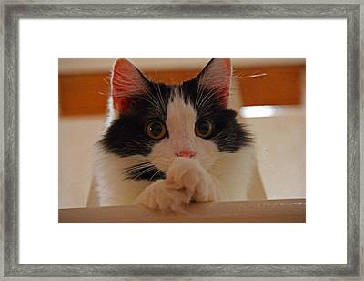 Framed Print featuring the photograph Looking Down From Above 004 by Andy Lawless