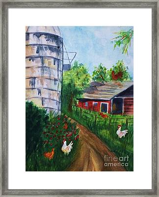 Looking Down On The Farm Framed Print