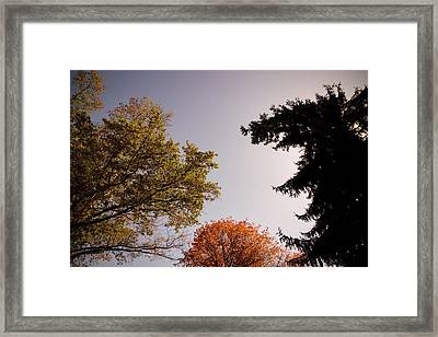 Framed Print featuring the photograph Looking Down On Us by Photographic Arts And Design Studio