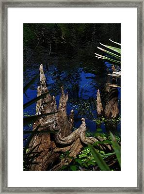 Looking For A Place To Fish Framed Print by Tara Miller