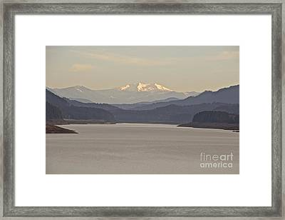 Looking For Diamond  Framed Print