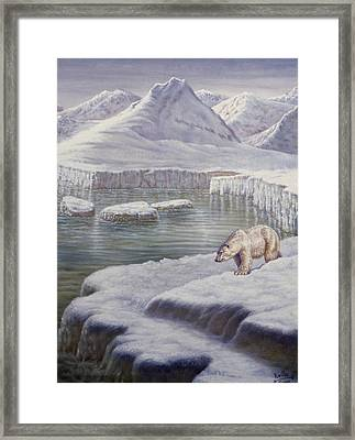 Looking For Salmon Framed Print by Gregory Perillo