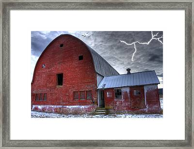 Looking For Shelter Framed Print by David Simons