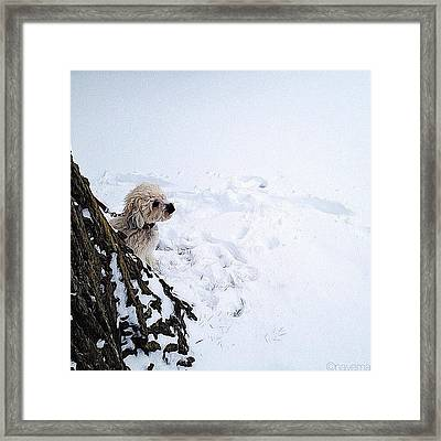Looking Forward To 2013 Framed Print