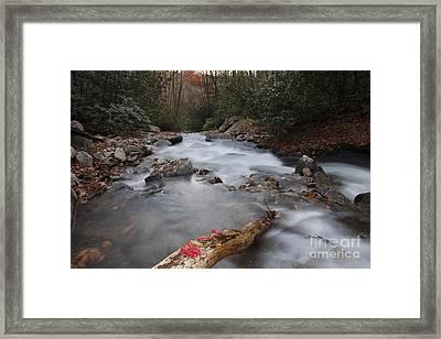 Looking Glass Creek Framed Print