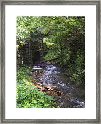 Looking Glass Creek - North Carolina Framed Print by Mike McGlothlen
