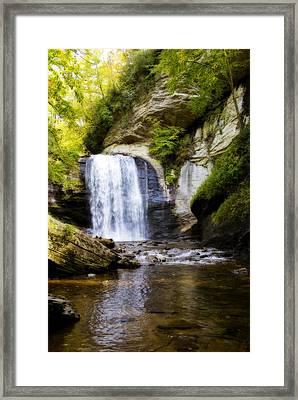 Looking Glass Framed Print by Steven Richardson