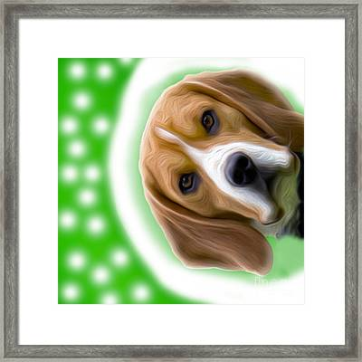 Looking Good Dog Framed Print by Jo Collins