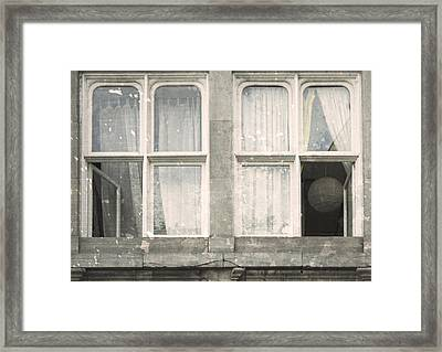 Looking In Framed Print