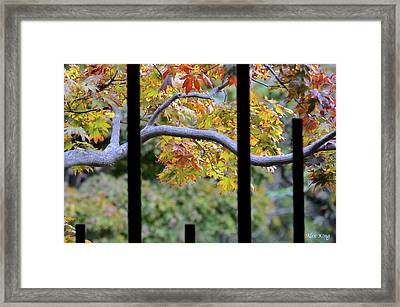 Looking In The Japanese Garden Framed Print by Alex King