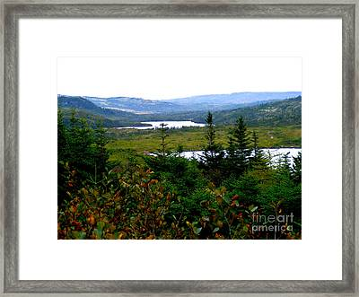 Looking In Through The Valley Framed Print