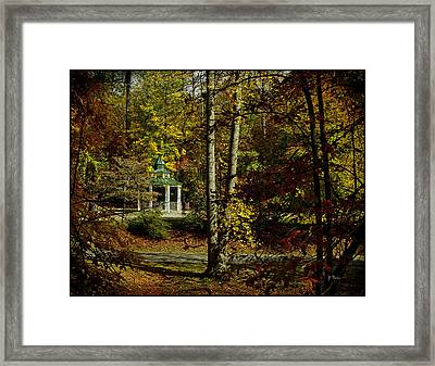 Framed Print featuring the photograph Looking Into Fall by James C Thomas