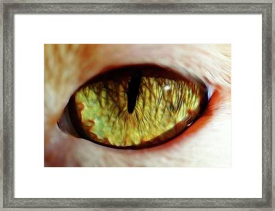 Looking Into The Soul Framed Print by Mariola Bitner