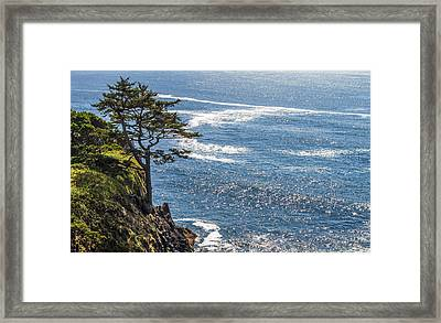 Looking Out Framed Print