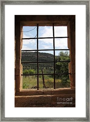 Looking Out  Framed Print by Diane Greco-Lesser