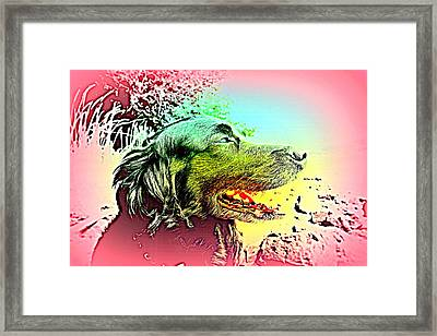 Looking Out For You, Wondering Where You Are And What You Are Doing Right Now  Framed Print by Hilde Widerberg