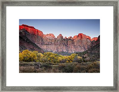 Looking Out From The Towers Of The Virgin Framed Print by Andrew Soundarajan