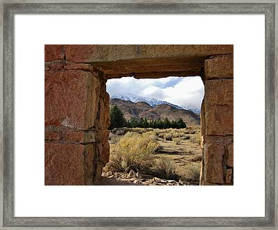 Framed Print featuring the photograph Looking Out by Marilyn Diaz