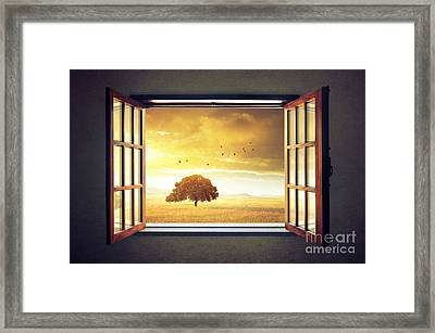 Looking Out The Window Framed Print by Carlos Caetano