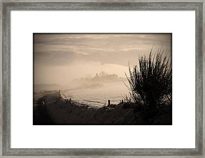 Looking South Framed Print by Liz  Alderdice