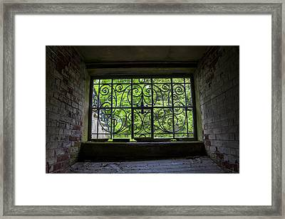 Looking Through Old Basement Window On To Vibrant Green Foliage Fine Art Photography Print  Framed Print