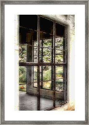 Looking Through The Window By Diana Sainz Framed Print