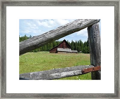 Looking Thru The Fence Framed Print by Alan Socolik