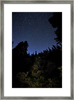 Looking Up And Out Framed Print by Melany Sarafis