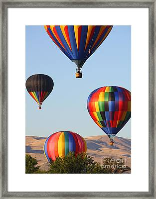 Looking Up Framed Print by Carol Groenen