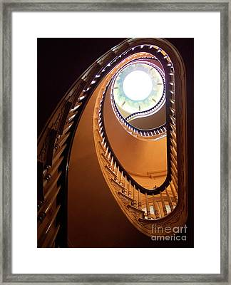Looking Up Framed Print by Jacqui Thomas